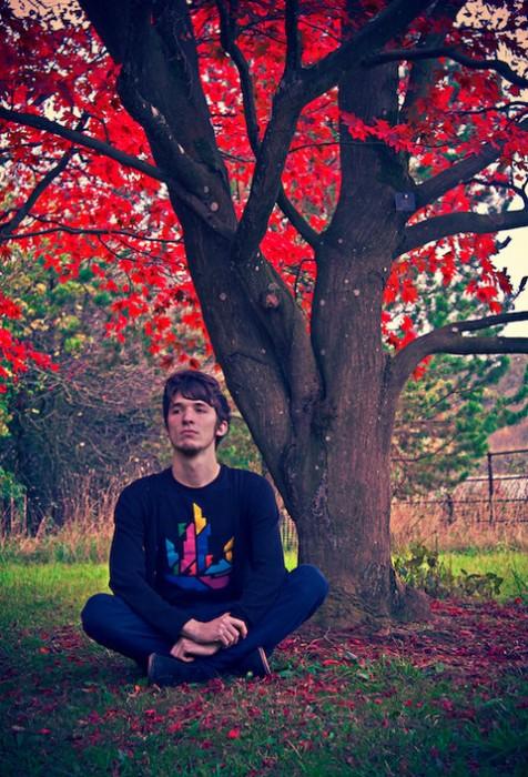 11t_leaves